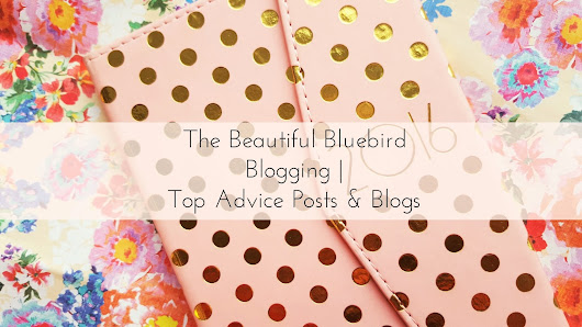 Blogging | Top Blogger Advice Posts