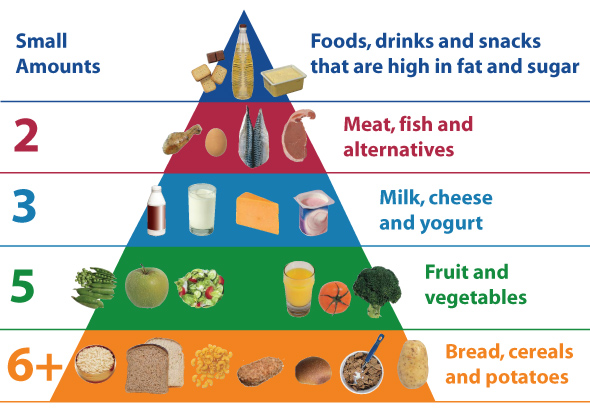 Food Pyramid For Teenagers (Food Pyramid Kids)