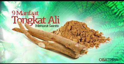 Herbal Tongkat Ali