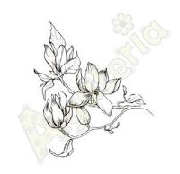 https://sklep.agateria.pl/en/stencils/1372-maska-kwiatki-2-5902557861323.html