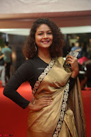 Aditi Myakal look super cute in saree at Mirchi Music Awards South 2017 ~  Exclusive Celebrities Galleries 018.JPG