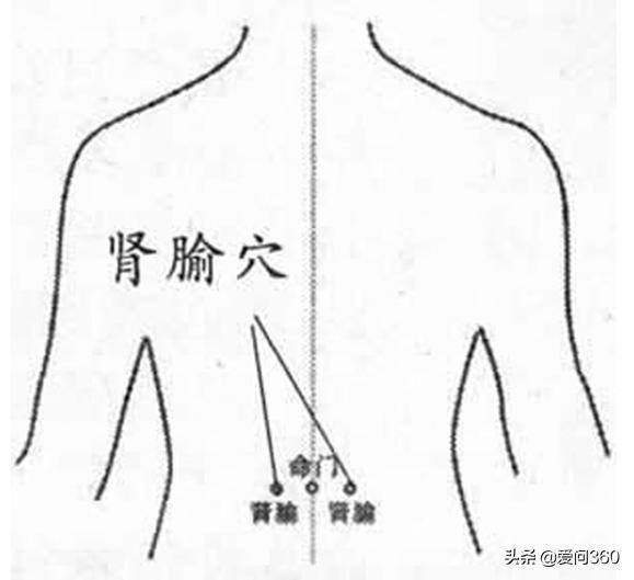 腰疼主要是三個方面問題,除了適當運動,這幾個穴位也能緩解腰疼(腰肌損傷、腰椎間盤突出、腰椎骨刺)