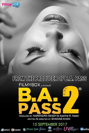 B.A. Pass 2 (2017) Hindi 480p HDRip 350mb