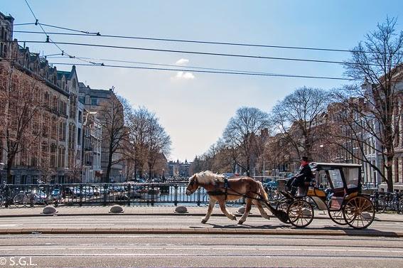Rembrandt y Van Gogh, el arte en Amsterdam