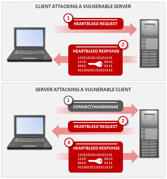 Heartbleed - Figure 1