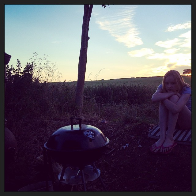 BBQ and English fields