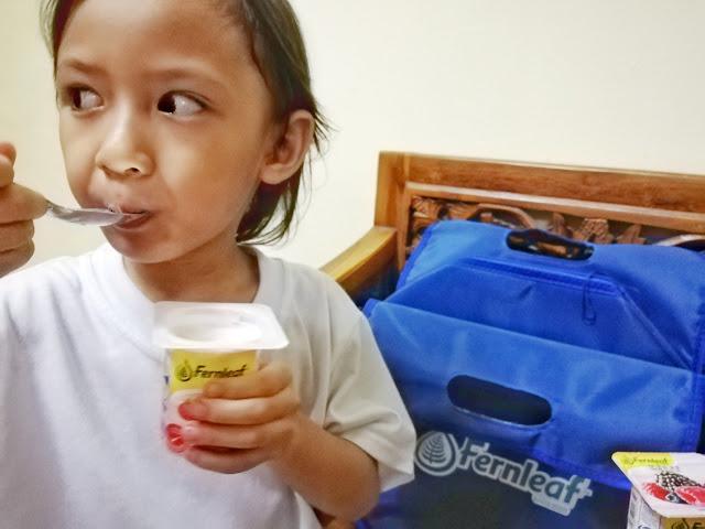 Yogurt Fernleaf Alternatif Sarapan Sihat untuk Pagi yang Sibuk