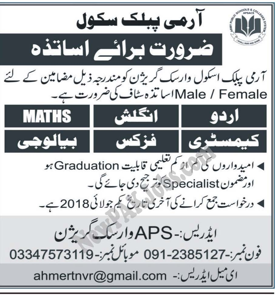 New Jobs In Army Public School and College