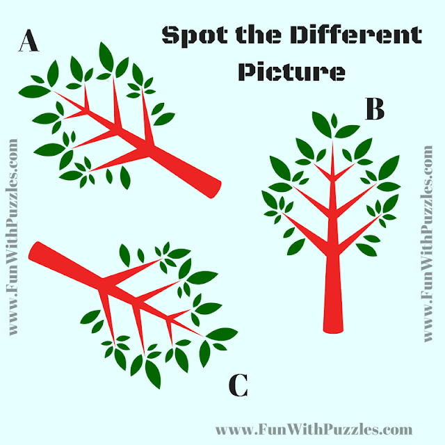 This is the Odd One out puzzle in which your challenge is to find the picture which is different from other two pictures.