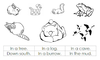 700 Coloring Pages Hibernating Animals Download Free Images