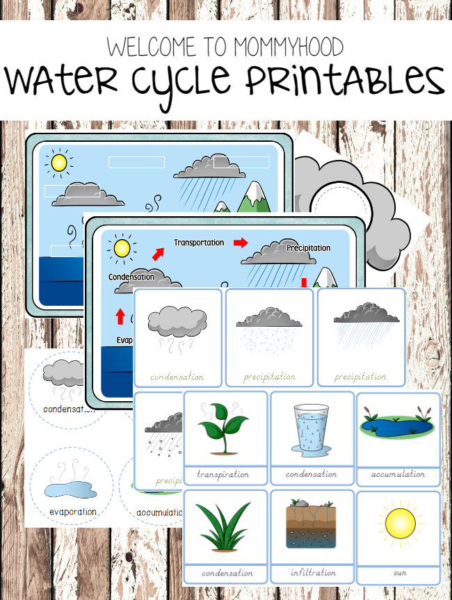 Water cycle printables from Welcome to Mommyhood #scienceactivities, #montessoriactivities, #montessori, #preschoolactivities, #preschool,