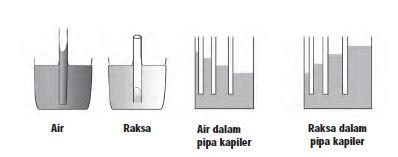 Perbedaan Ketinggan Air dan Raksa Di Dalam Pipa
