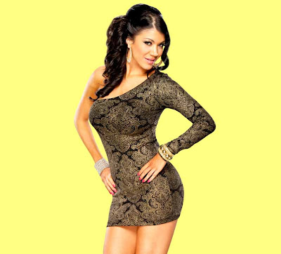 Rosa Mendes Wwe Superstar Latest Hd Hot Wallpapers 2013 ...