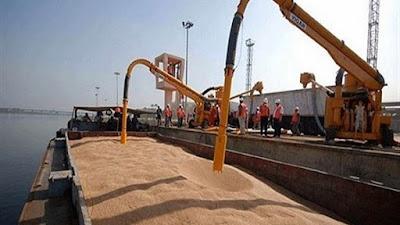 وصول 248 ألف طن غلال إلى ميناء الإسكندرية