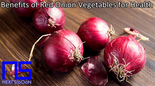 Red Onion Vegetables, What Is Red Onion Vegetables, Understanding Red Onion Vegetables, Explanation of Red Onion Vegetables, Benefits of Red Onion Vegetables for Health, Benefits of Red Onion Vegetables for the Body, Nutrition of Red Onion Vegetables, Vitamins for Red Onion Vegetables, Vitamins and Red Onion Vegetables Nutrition for Body Health, Get a Healthy Body with Red Onion Vegetables, Information about Red Onion Vegetables, Complete Info about Red Onion Vegetables, Information About Red Onion Vegetables, How the Nutrition of Vitamin Red Onion Vegetables is, What are the Benefits of Red Onion Vegetables for the Body, What are the Benefits of Red Onion Vegetables for Health, the Benefits of Red Onion Vegetables for Humans, the Nutrition Content of Red Onion Vegetables provides many benefits for body health.