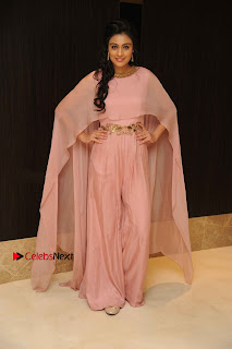 Actress Neha Hinge Stills in a Beautiful Pink Dress at Srivalli Movie Audio Release  0006.jpg