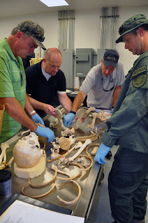 Officers assembly a human skeleton in the lab.