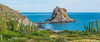 Fortalecen acciones de conservación para ANP de Baja California