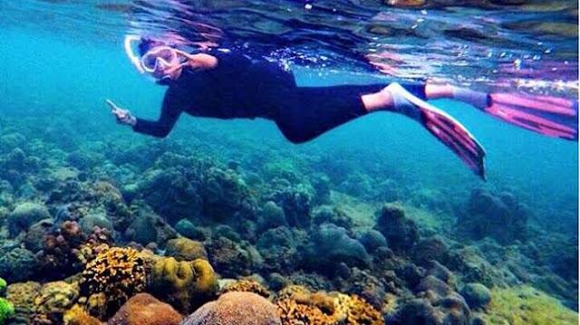 Pesona terumbu karang di pantai di Teluk Tamiang di Kalimantan Selatan.