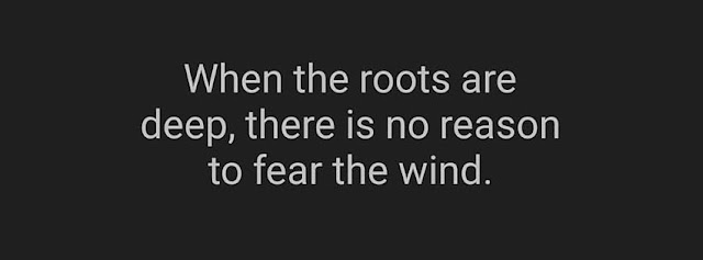 fear the wind