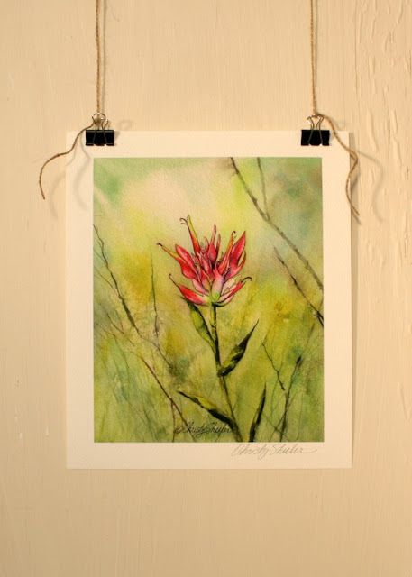 Indian Paintbrush Giclee Fine Art Print available in the Etsy Shop Christy Sheeler Artist
