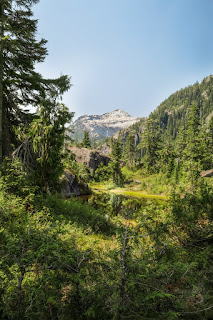 Bedwell Trail