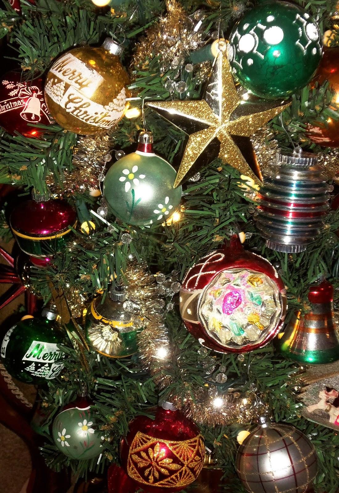 100_7665 Where Do Christmas Trees Come From Originally