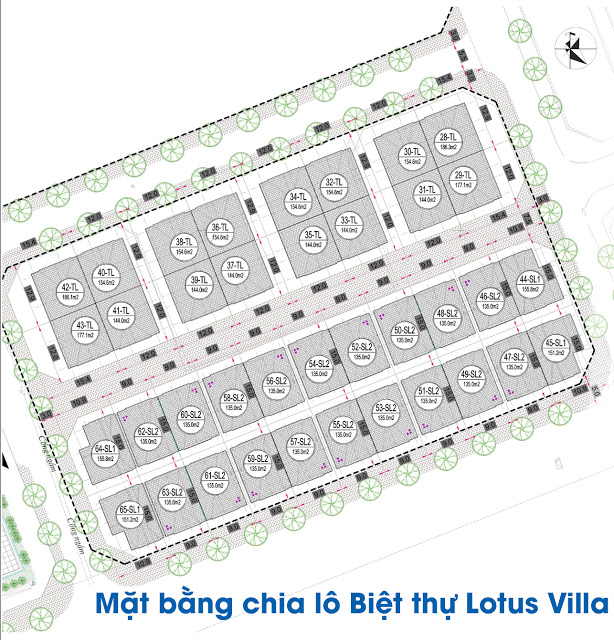 Mặt bằng biệt thự Lotus Villa - EuroWindow River Park