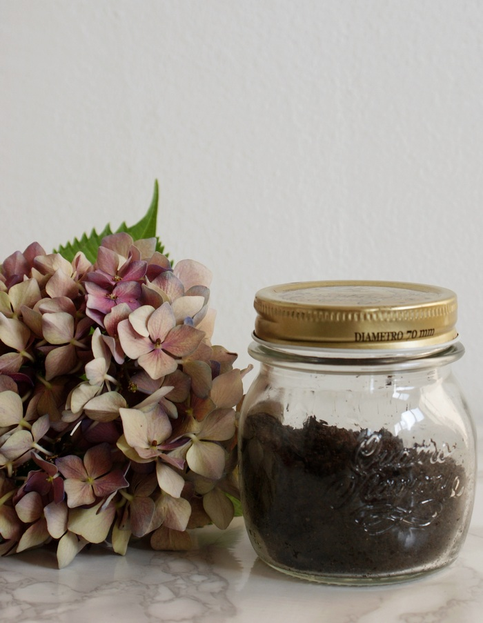 diy scrub summer body coffee