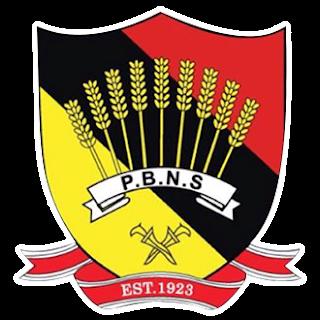 Negeri Sembilan logo -  Dream League Soccer