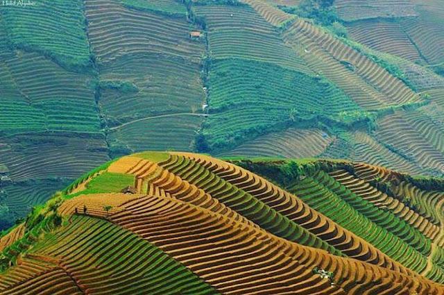 foto pemandangan indah bukit panyaweuyan jawa barat