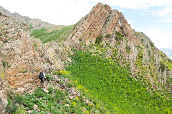 Коксу: за перевал Куль   2015 июнь