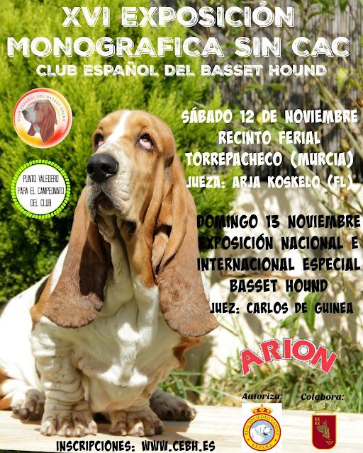 Abierto el plazo de inscripción para la XVI Exposición Nacional sin CAC de Torrepacheco (Murcia) 1