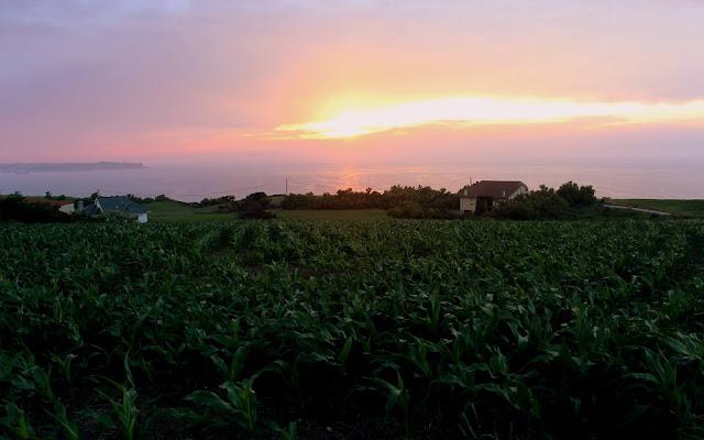 Puesta de sol en Langre. Campos de maíz con la puesta de sol. Puesta de sol en la bahía de Santander. Cantabria