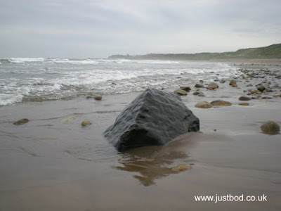 Prehistoric behemoth, Sandsend, Whitby