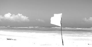 白旗whiteflag
