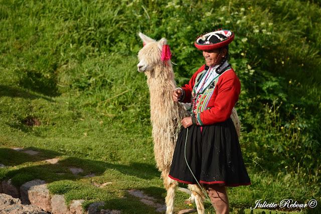 Péruvienne et son alpaga au Pérou