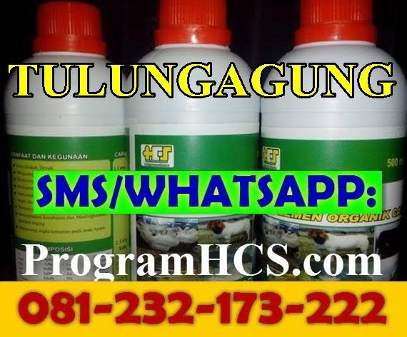 Jual SOC HCS Tulungagung