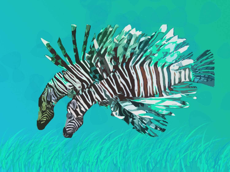 Mia: Zebra fish!!!!