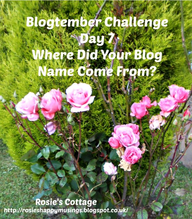 Blogtember Challenge Day 7 where did your blog name come from