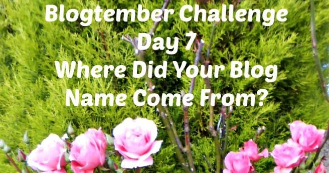 Rosie 39 s cottage blogtember challenge day 7 where did for Where did pi come from