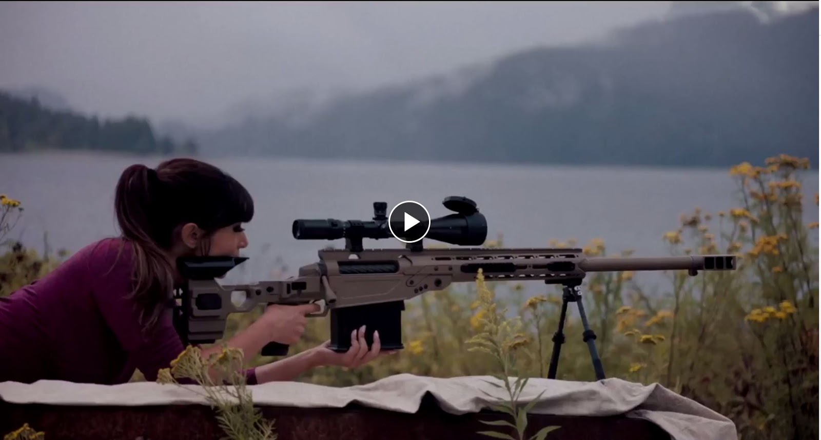 Mister Donut's Firearms Blog: Cadex chassis for 50 BMG