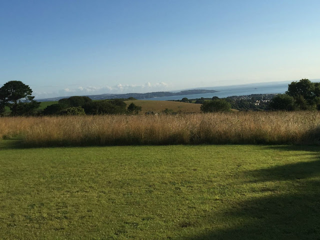 A view across the coastline from the dog walk