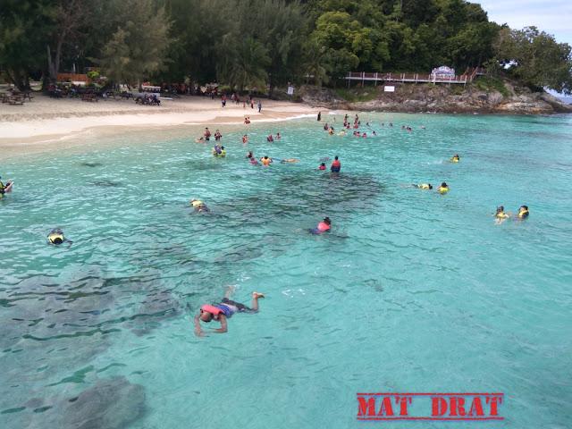 PERCUTIAN KE PULAU REDANG Aktiviti di Pulau Redang