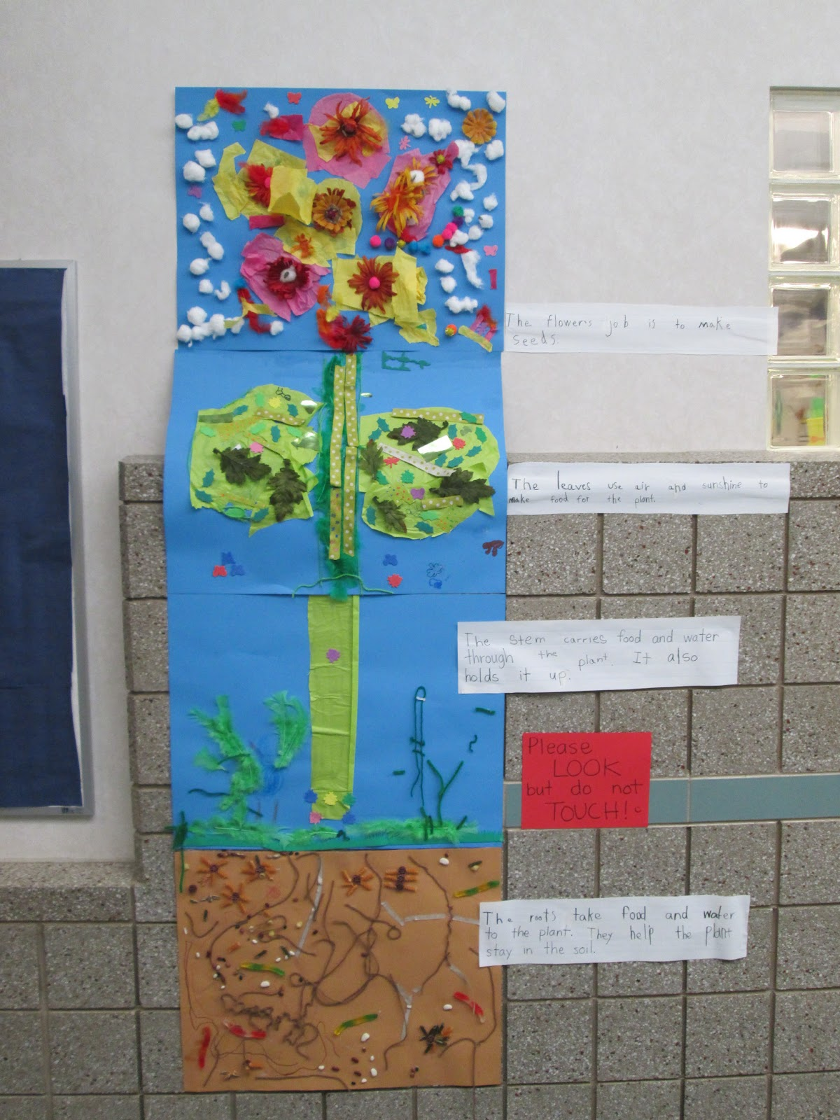 Mrs. Taft's Kindergarten Class: Earth Day and Parts of a Plant
