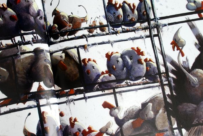 Ptaki z hodowli przemysłowej