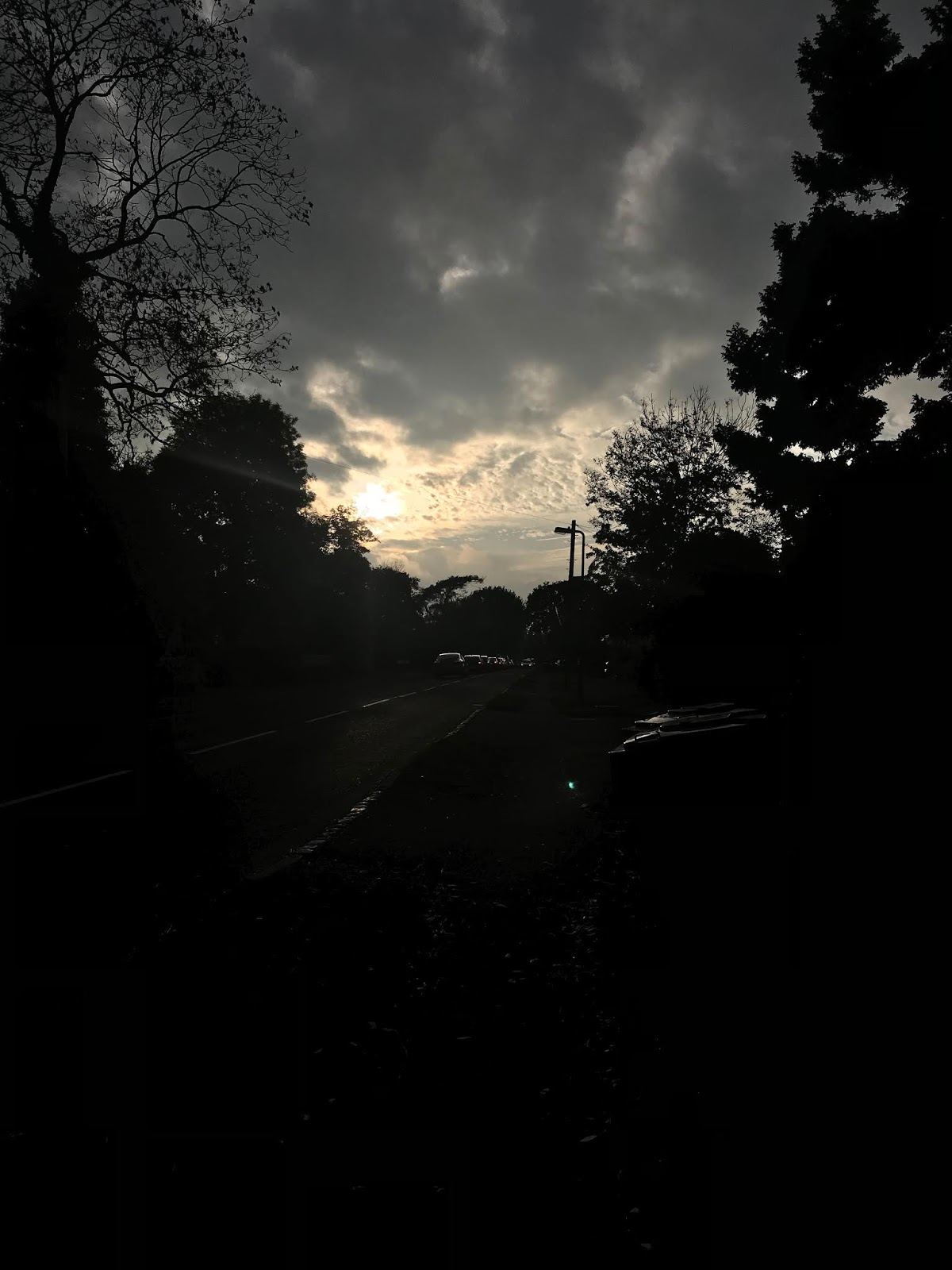 Sunset on Shawhurst Lane