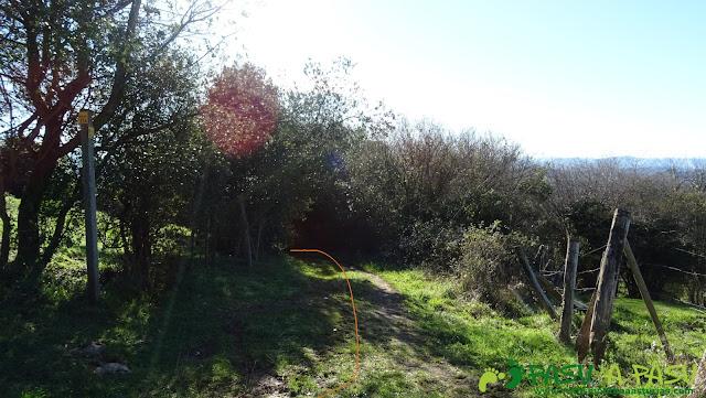 Desvío en la zona de La Eria del Camin de Careses