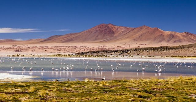 Dia 3 em San Pedro de Atacama