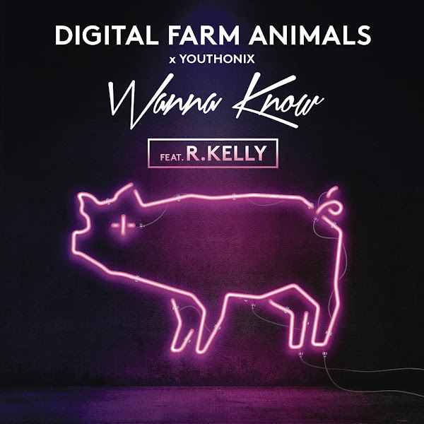 Digital Farm Animals & Youthonix - Wanna Know (feat. R. Kelly) - Single Cover